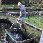 Bio-zertifizierte Fischzucht